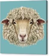 Sheep Portrait. Illustrated Portrait Of Canvas Print