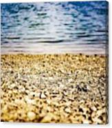 Shell Shocke Canvas Print