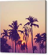 Silhouette Of Palm Trees At Sunset Canvas Print