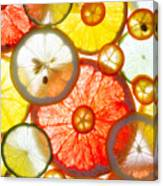 Sliced Citrus Fruits Background Canvas Print