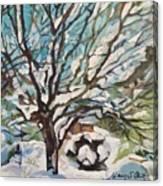 Snow Covered Cherry Tree Canvas Print
