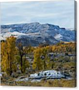 Snow Falls On Autumn Canvas Print