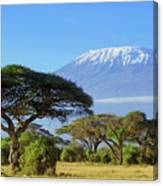 Snow On Top Of Mount Kilimanjaro In Canvas Print