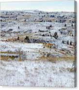 Snowy Slope County Canvas Print