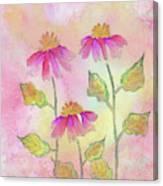 So Pretty In Pink Canvas Print