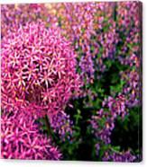 Spring Flowers In Garden Canvas Print