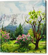 Spring In The Wallowas Canvas Print