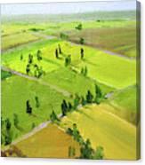 Springtime Horizon Canvas Print