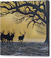 Stags At Dawn Canvas Print