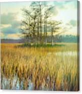 Standing On The Edge Of Evening  Canvas Print
