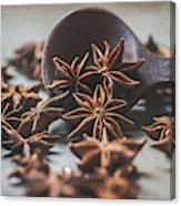 Star Anise 4825 By Tl Wilson Photography  Canvas Print