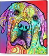 Starry Lab Canvas Print