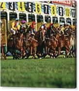 Start Of Horse Race, Sydney, New South Canvas Print