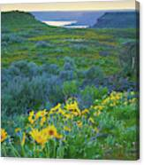 Steamboat Rock 01 Canvas Print