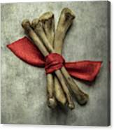 Still Life With Bones And Red Ribbon Canvas Print