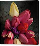 Still Life With Tulips 35 Canvas Print