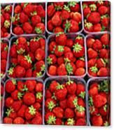 Strawberries For Sale, Bergen, Norway Canvas Print
