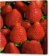 Strawberry Cliche Canvas Print
