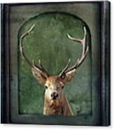 Stuffed And Mounted Canvas Print