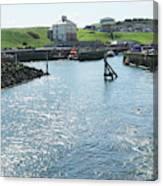 sunlight glistening on water at Eyemouth harbour Canvas Print