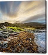 Sunrays At Dawn Along The Coast Canvas Print