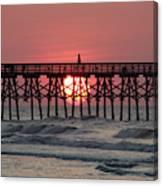 Sunrise Myrtle I Canvas Print