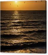 Sunrise Birds North Carolina Canvas Print