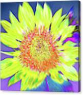 Sunspray Canvas Print