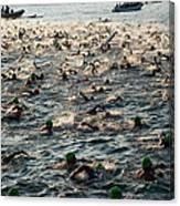 Swim Start Of Triathlon In Kailua Bay Canvas Print