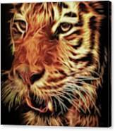 T T T Tiger Canvas Print