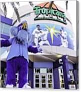 Tampa Bay Rays Mascot Canvas Print