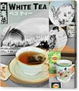 Tea Collage With Brush  Canvas Print