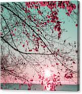 Teal And Fuchsia - Autumn Sunrise Reimagined Canvas Print