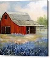 Texas Blue Bonnets And Red Barn Canvas Print