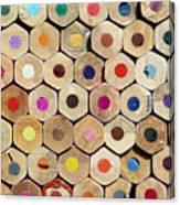 Texture Of Colored Pencils Canvas Print