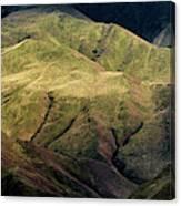 Textured Hills Panoramic Canvas Print