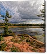 The Artistic Cranberry Bog Canvas Print