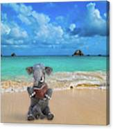 The Beach Story Canvas Print