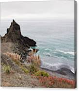 The Beauty Of Big Sur Canvas Print