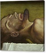 The Body Of The Dead Christ, Detail Of The Head, 1521 Canvas Print