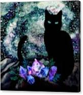 The Cat With Aquamarine Eyes And Celestial Crystals Canvas Print