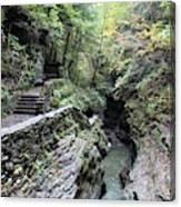 The Gorge Trail Canvas Print