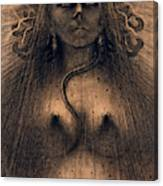 The Idol Of Perversity, 1891 Canvas Print