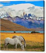 The Landscape In The National Park Canvas Print