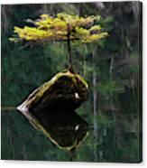 The Little Tree On Fairy Lake 5 Canvas Print