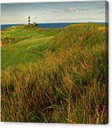 The Old Head Golf Links, Kinsale Canvas Print