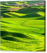 The Palouse Rolling Hills Canvas Print