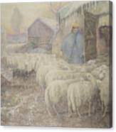 The Return Of The Shepherd Canvas Print