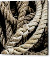 The Rope Canvas Print