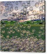 The Simplicity Of Bubbles  Canvas Print